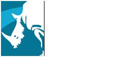 Assam Tour white logo