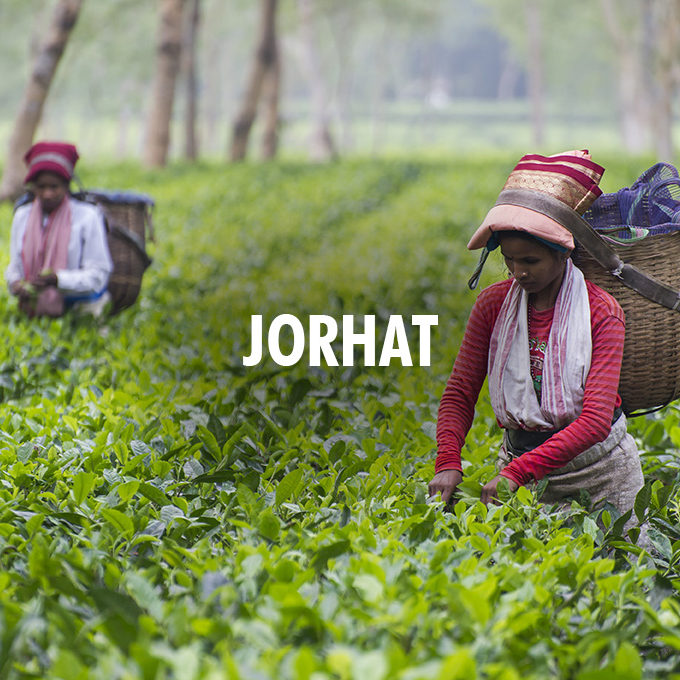 Jorhat Holiday Packages